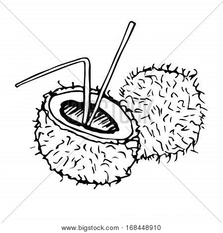 Vector illustration of coconut with straw poll and milk. Black and white, hand drawn.