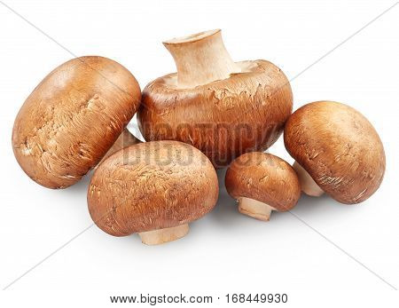 Champignon mushrooms isolated on the white background