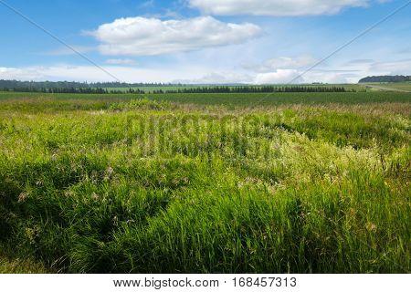 Rural landscape of Prince Edward Island, Canada.