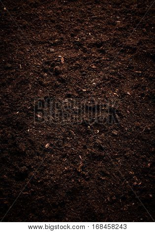 Texture of the soil. Nature background. Dirt