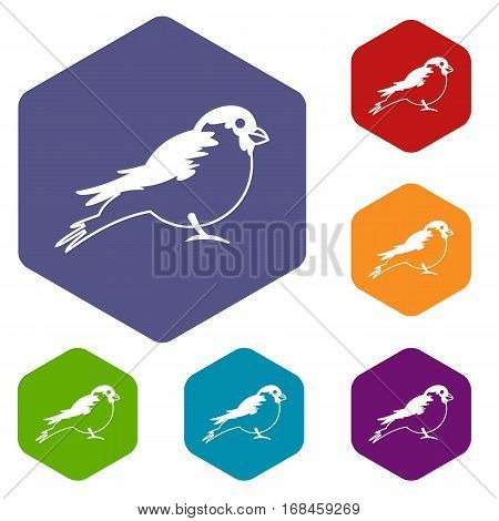 Bullfinch icons set rhombus in different colors isolated on white background