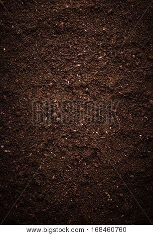 Texture of the dirt. Nature background. Soil