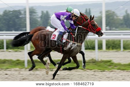Horse race for the prize of Bolshoi Osenni in Pyatigorsk,Northern Caucasus, Russia.