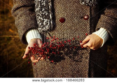 Gorgeous Stylish Beautiful Girl Holding Amazing Red Berries Of Hawthorn On A Background Of Sunny Aut