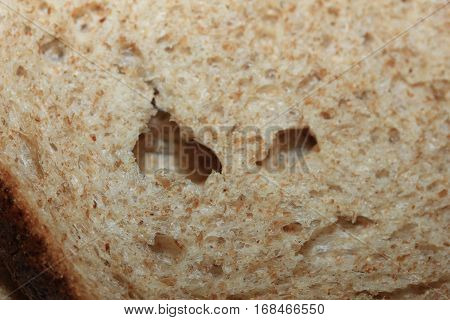 Slice of Wholemeal or wholegrain bread in closeup