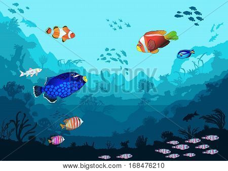 Sea underwater world with bright fish and animals vector illustration