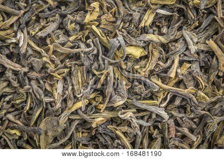 background texture of loose leaf  Tindharia estate  green tea