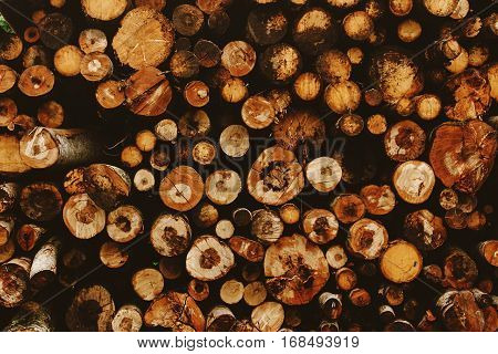 Pile Of Stacked Round Firewood In Summer Mountains, Background Wallpaper And Texture, Energy Industr