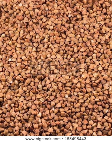 buckwheat texture texture this is a very useful cereal it is cooked