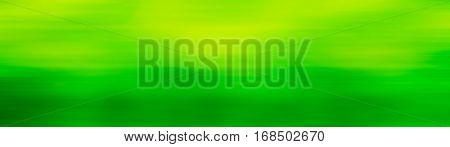 green backgrund