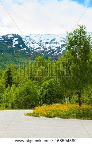 Mountains Summer Landscape In Norway.