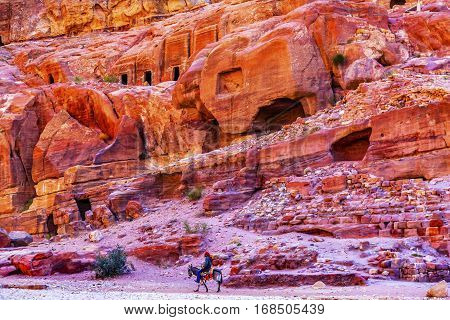 Donkey Rose Red Rock Tombs Afternoon Street of Facades Petra Jordan. Built by the Nabataens in 200 BC to 400 AD. Rose Red canyon walls create many abstracts close up. Inside the Tombs the rose red can become blood red. Reds created by magnesium in sandsto