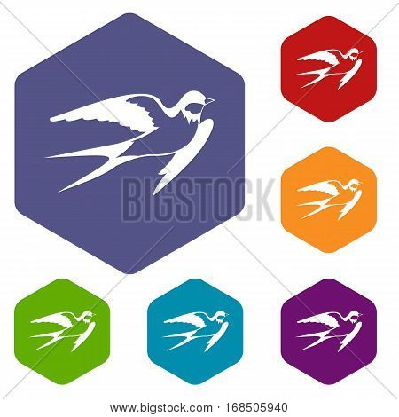 Barn swallow icons set rhombus in different colors isolated on white background