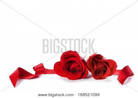 Two heart shaped red roses and ribbons isolated on white background, Valentines day