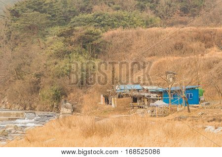 Old abandoned shack next to a river in a wilderness area with tall grasses and trees