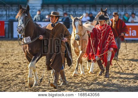 Buenos Aires Argentina - Jul 16 2016: Group of gauchos lead their horses during a show at the Rural Exhibition.