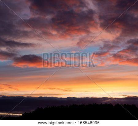 Beautiful vivid sunset sky and dark forest landscape