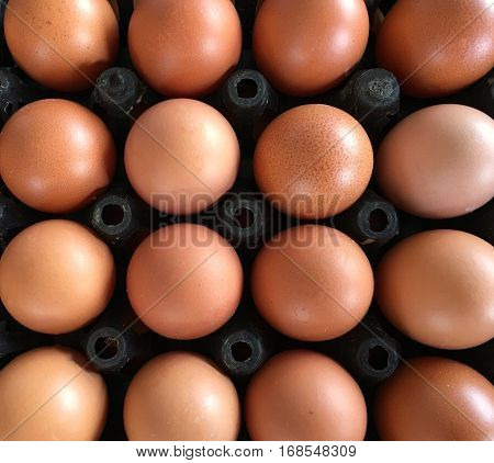 Top view closeup of organic eggs in black container.