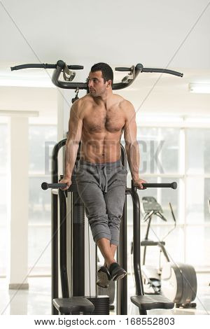 Parallel Bars Exercise For Triceps And Chest
