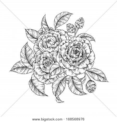 Vector hand drawn bouquet of flowers in retro style. Floral sketch vintage posy background for print, t-shirt, fabric, textile, greeting card, label and invitation