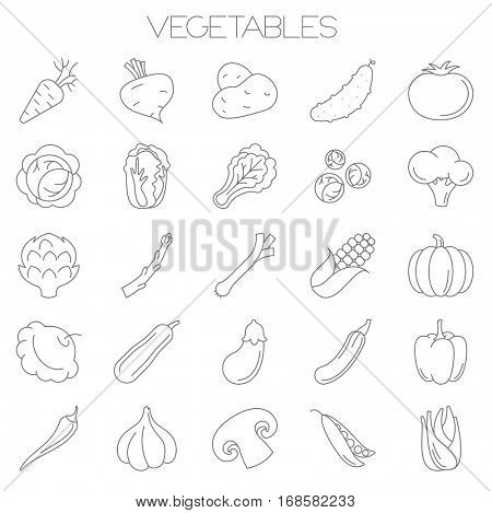 Thin line flat design fresh vegetables and salads  vector icon set.