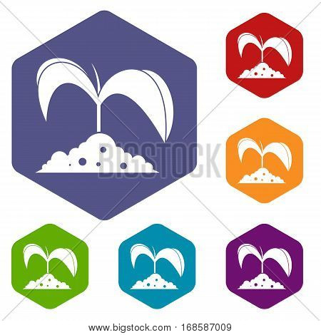 Green seedling in soil icons set rhombus in different colors isolated on white background