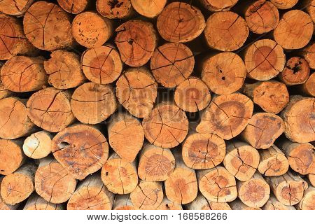 texture of pile firewood, pile firewood background