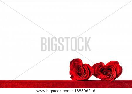 Two heart shaped red roses on fabric isolated on white background, Valentines day