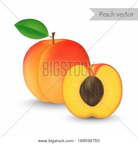 Peach vector isolated on white background. Half peach.