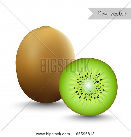 Kiwi vector isolated on white background. Half kiwi.