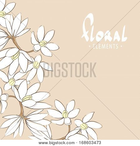 Romantic floral background with white flowers on branch