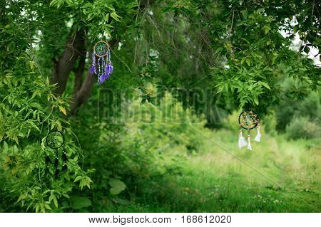 Green Nature Background, Great For Text