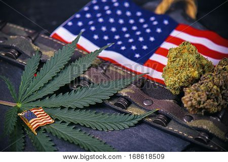 Cannabis buds, leaf and american flag with some bullets and camo - veteran themed medical marijuana concept
