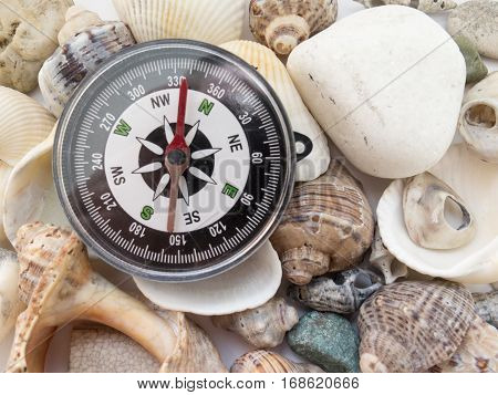 Compass And Interesting Seashells Closeup, Background About Tourism And Travel