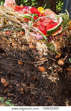 Opened up compost pile showing the layers of decomposing materials