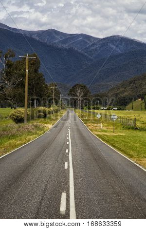 Straight road to the great alpine road in Victoria, Australia