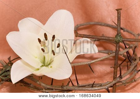 Crown of Thorns crucifix and Easter white Lily