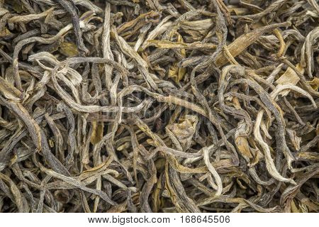 background texture of loose leaf Yunnan Mao Feng green tea
