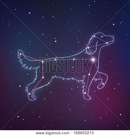 Vector Illustration Of Canis Major. Dog Constalletion Hand-drawn Background. Astrology Picture With