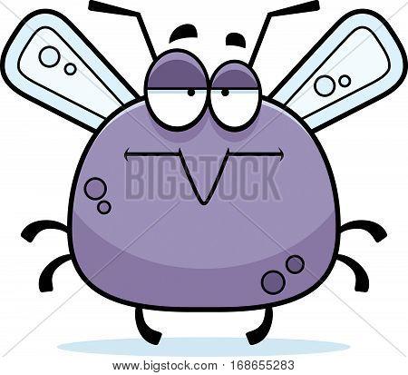 Bored Little Mosquito
