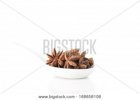 Whole star of anise presented in a white spoon with ample copy space..