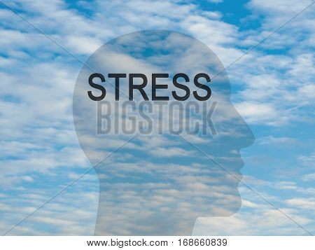 Word Stress On Transparent Head Silhouette Against A Blue Cloudy Sky illustration
