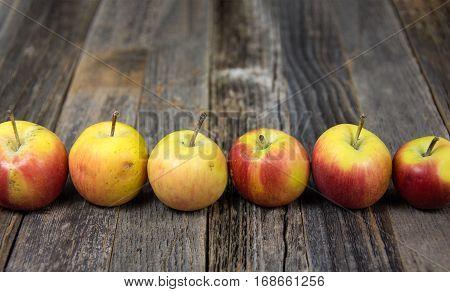 row of tiny organic apples on rustic wood