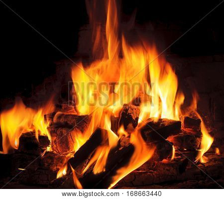 bright flame and fire from burning woods