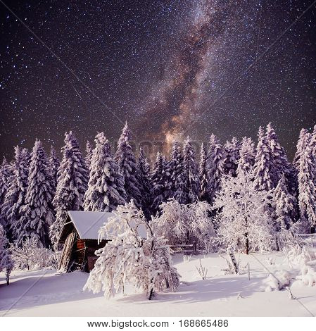 Starry sky and a tree in frost at the beautiful house in the woods in midwinter.