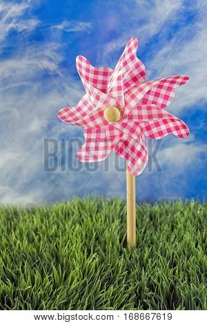 pink and white gingham pinwheel in grass with summer sky background