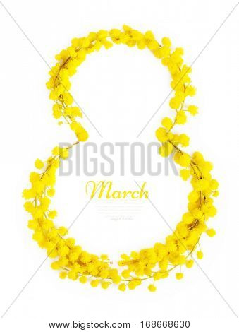 Greeting Card International Women's Day on March 8th. Branches of mimosa in the form of number eight.