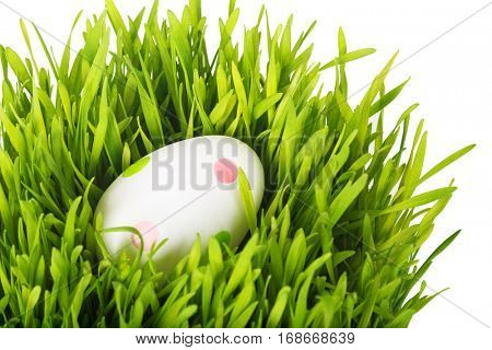 Easter egg in the grass.