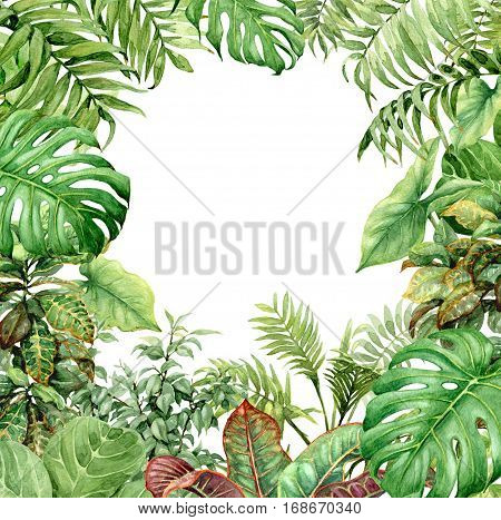 Hand drawn branches and leaves of tropical plants. Natural green background with space for text. Watercolor square rainforest frame.