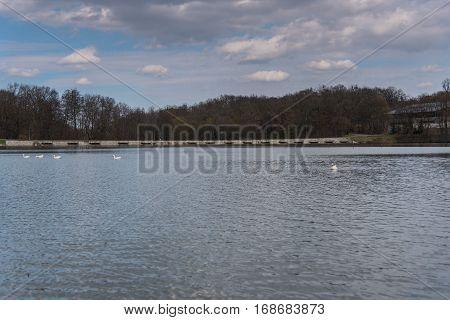 Beautiful view of a Lake in Sibiu